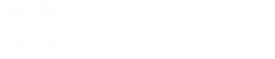 Vitolus GmbH Logo