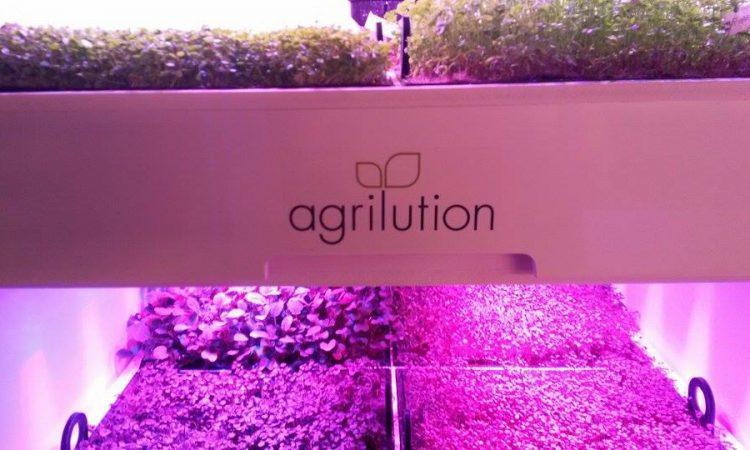 agrilution plantcube
