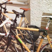 Bambus Fahrräder