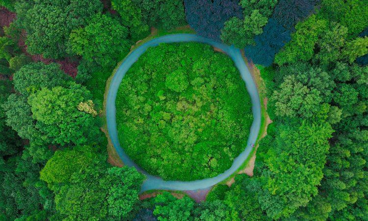 Green Alley Award 2018: Startups aus der Circular Economy gesucht!