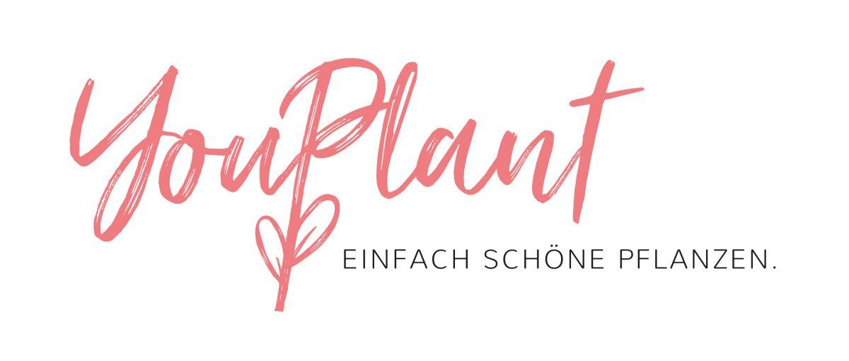 YouPlant GmbH & Co. KG