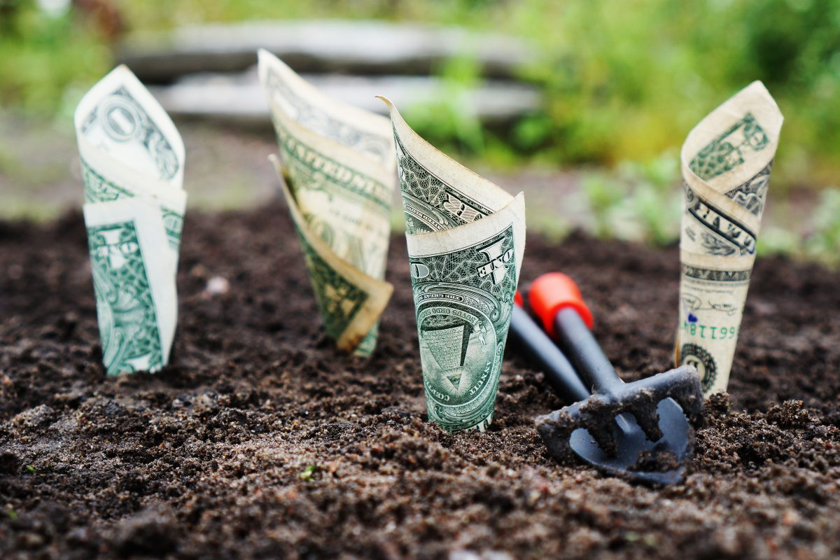 """""""I Need A Dollar"""" – Startups sharing their experience of Finance"""