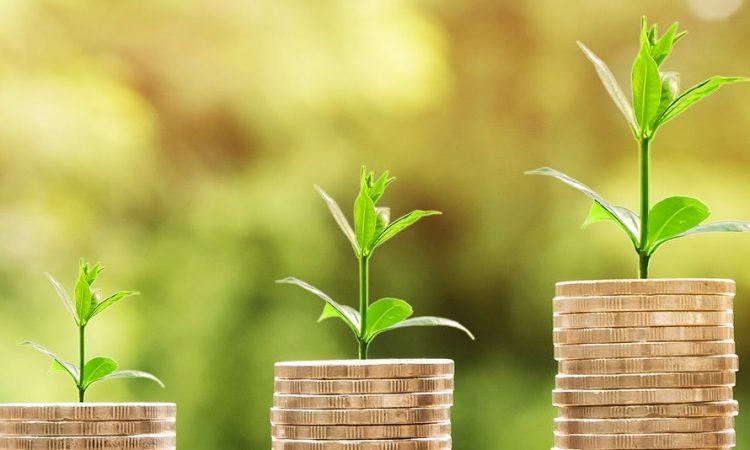 Beteiligungskapitalmarkt, Invest, Zuschuss