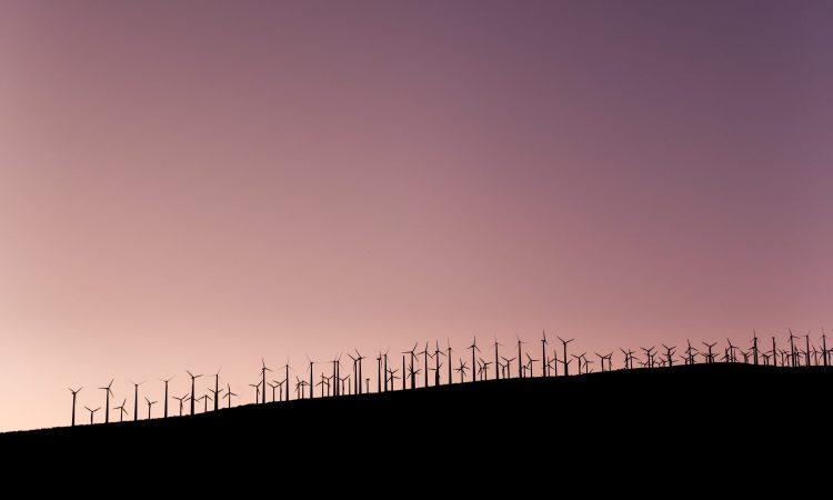 Klimaschutz-Unternehmen