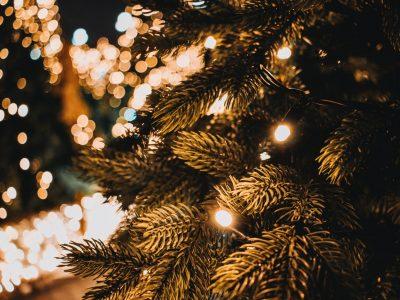 5 Startups, die unter Eurem Weihnachtsbaum landen könnten